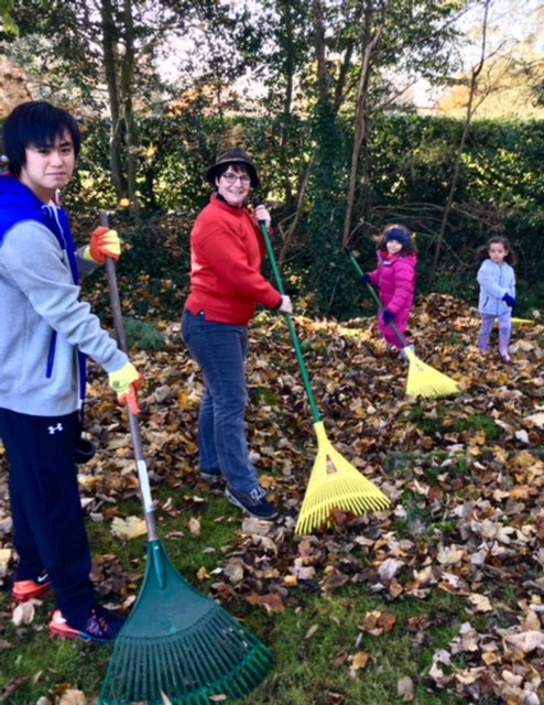 All ages raking